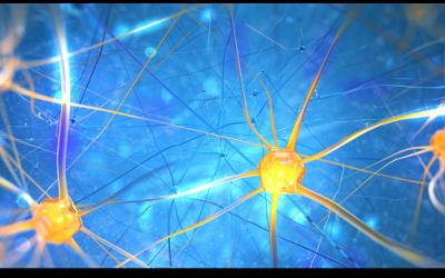 Neuro + Sales: Adviserend verkopen met Neurowetenschappelijk inzicht